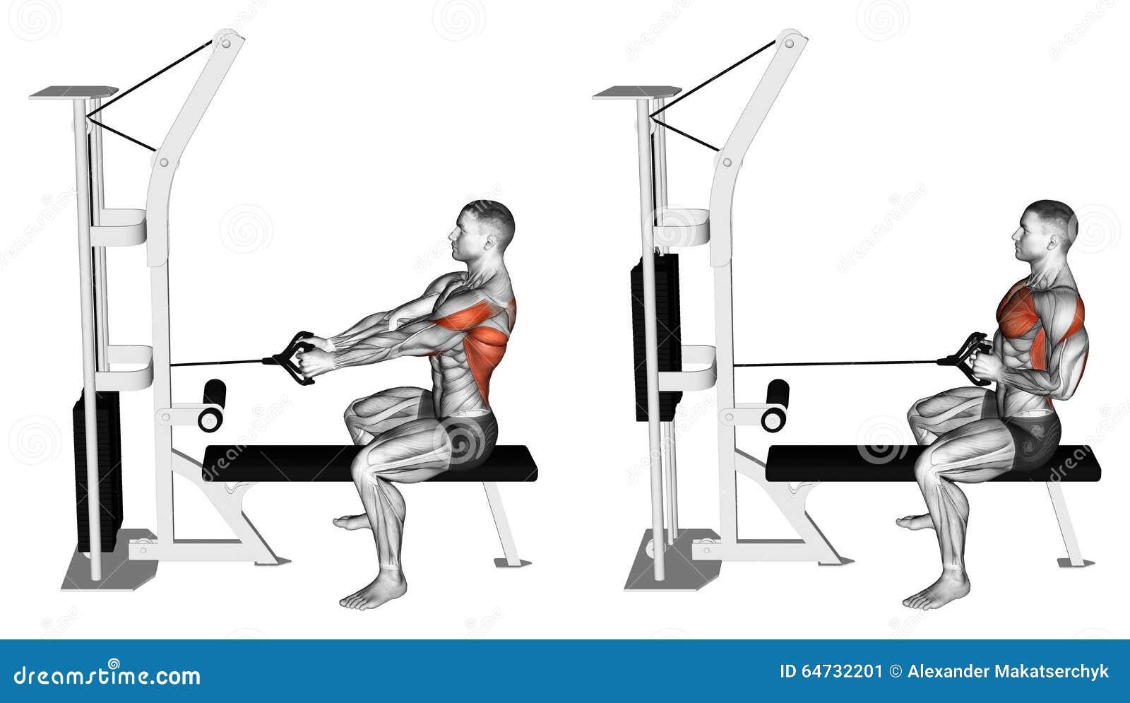 Esercitarsi Spinga il simulatore del blocco alla seduta sul banco
