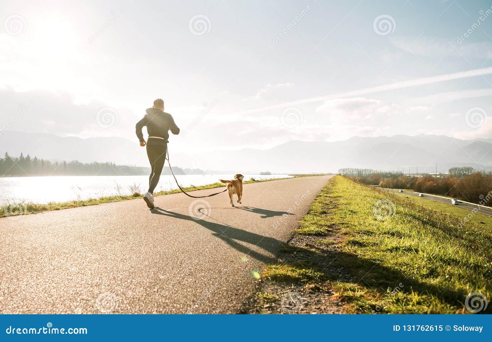 Esercizi di Canicross Attività di sport all aperto - uomo che pareggia con il suo cane del cane da lepre