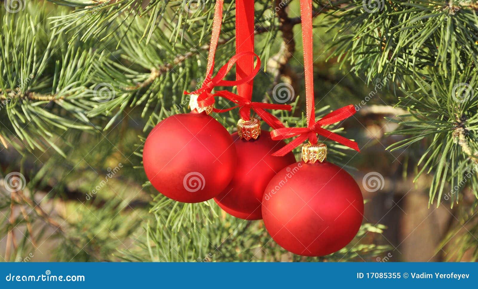 Esferas do vermelho da decoração de Cristmas