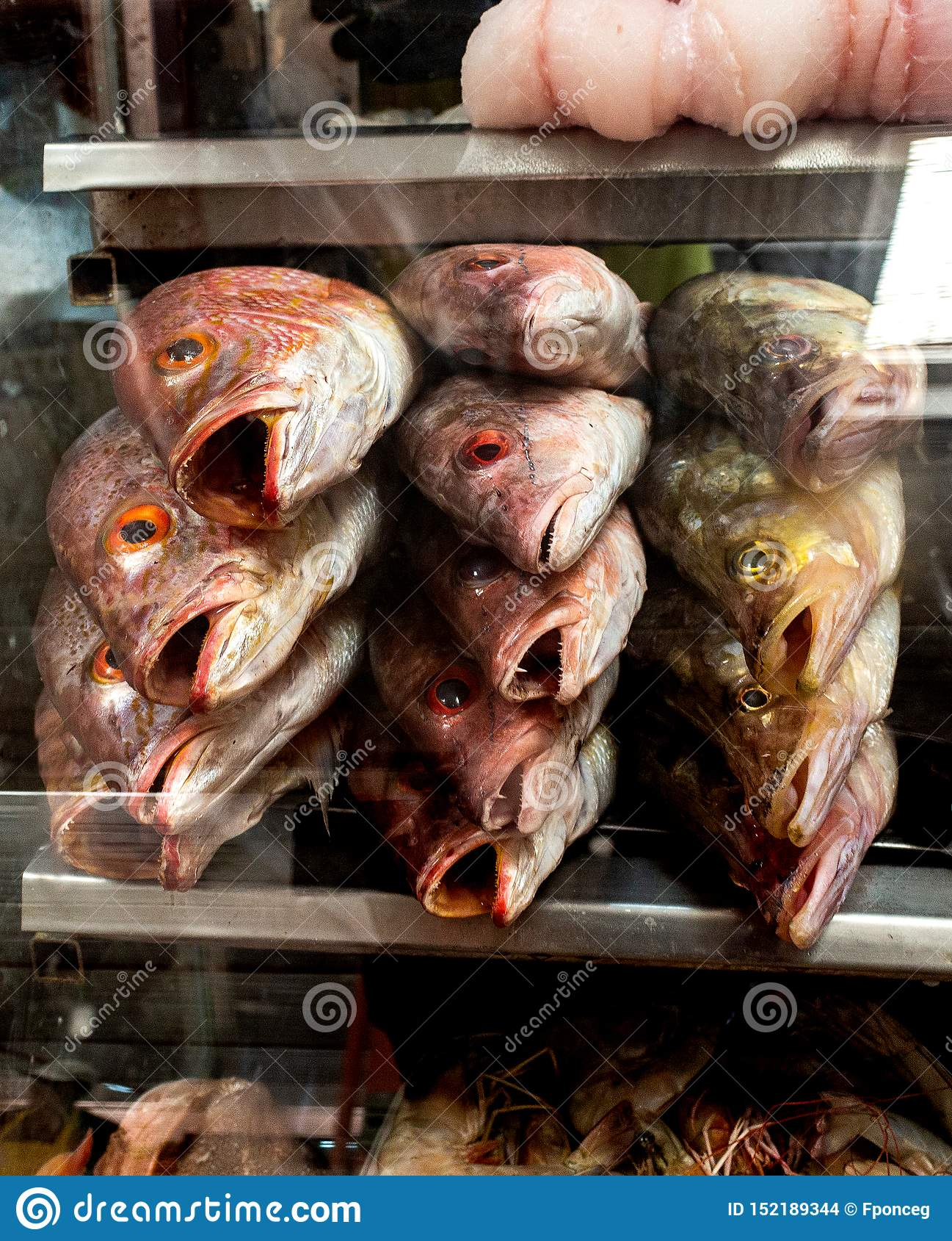 Esibito in una vetrina di un mercato