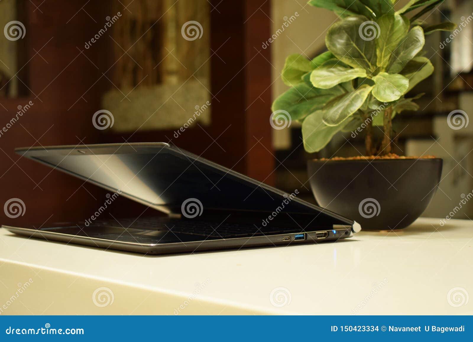Espace de travail avec l ordinateur portable et un pot