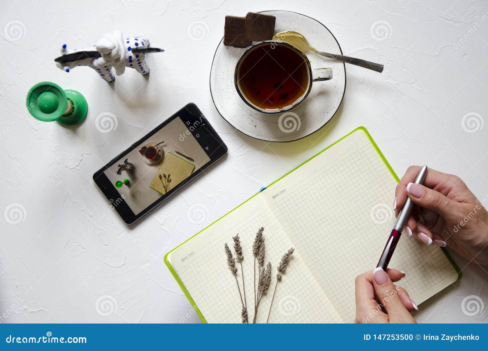 Espacio de trabajo con la libreta, taza de t? en un fondo blanco Endecha plana, escritorio del escritorio de oficina de la visi?n