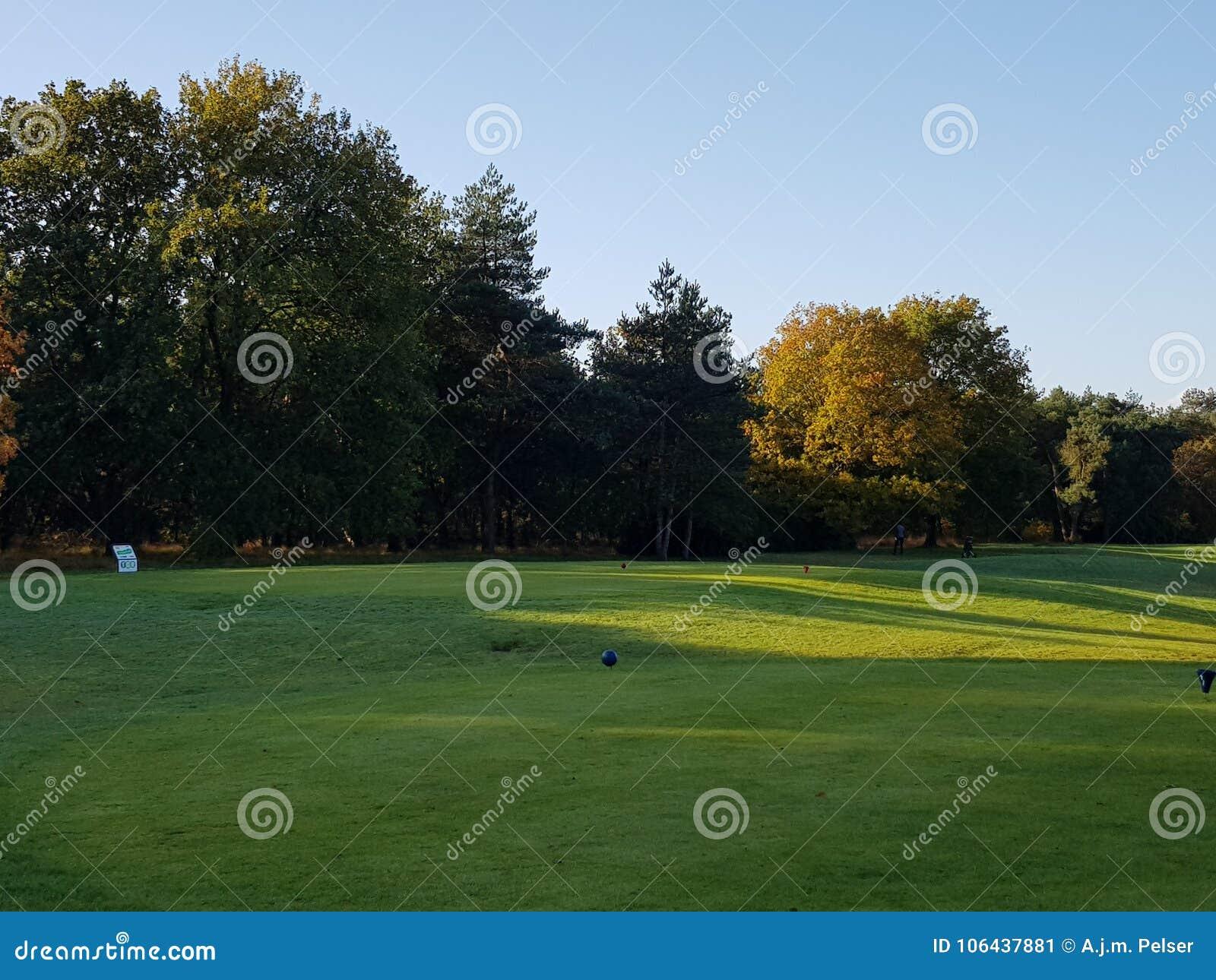 Espacios abiertos y verdes del campo de golf del golf