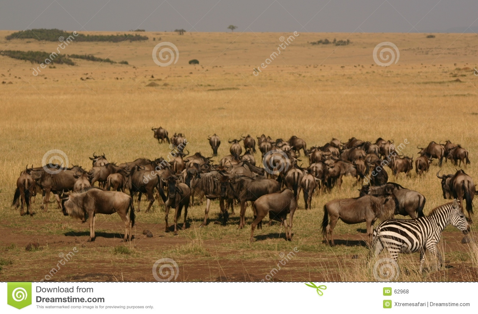 Espansione di Mara