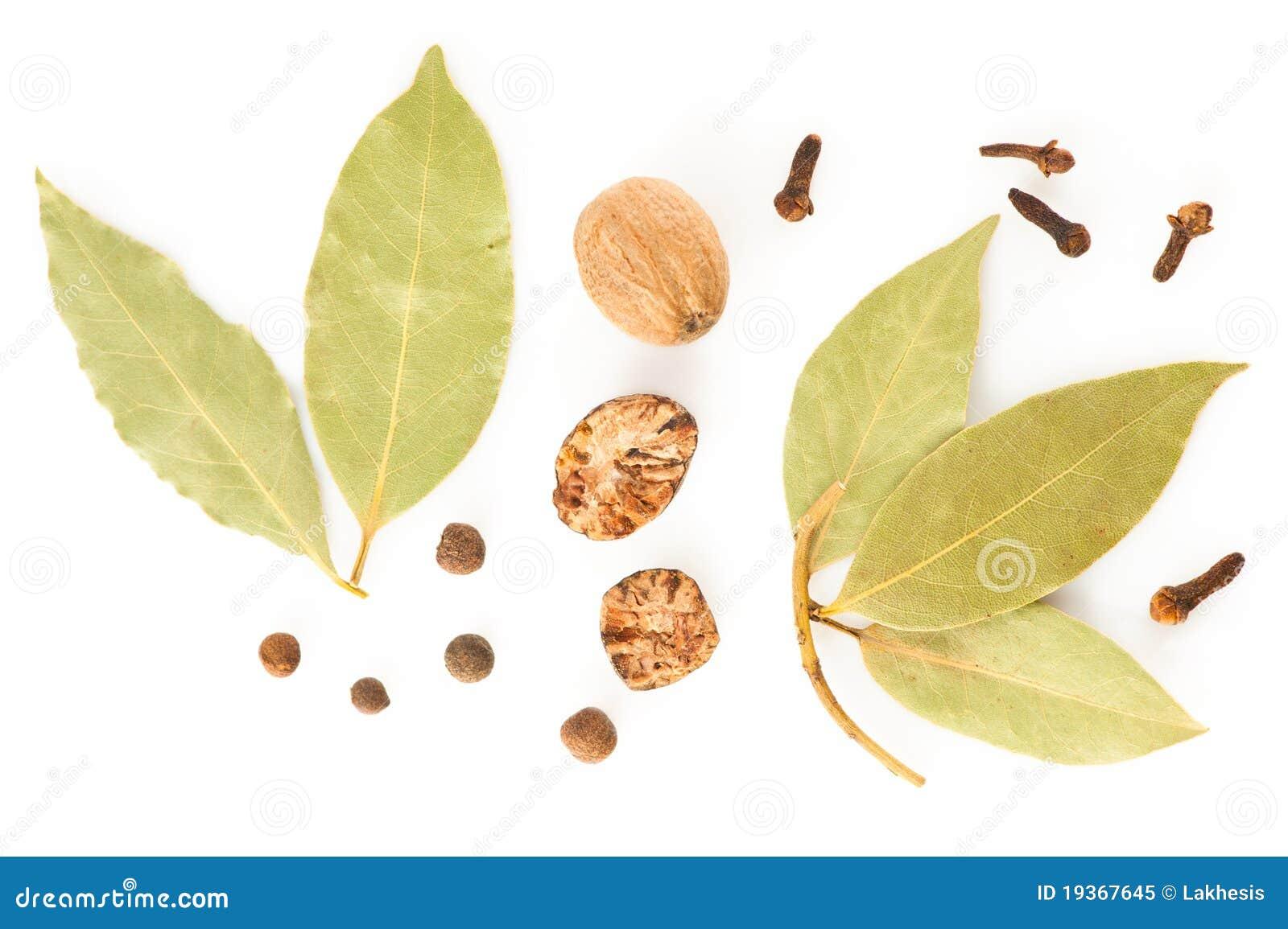 Especiarias. Mistura de ervas secas diferentes