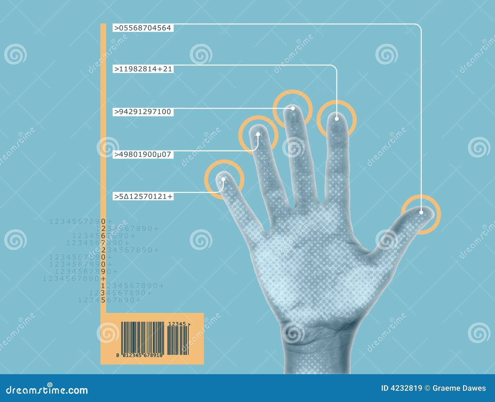 Esplorazione della mano