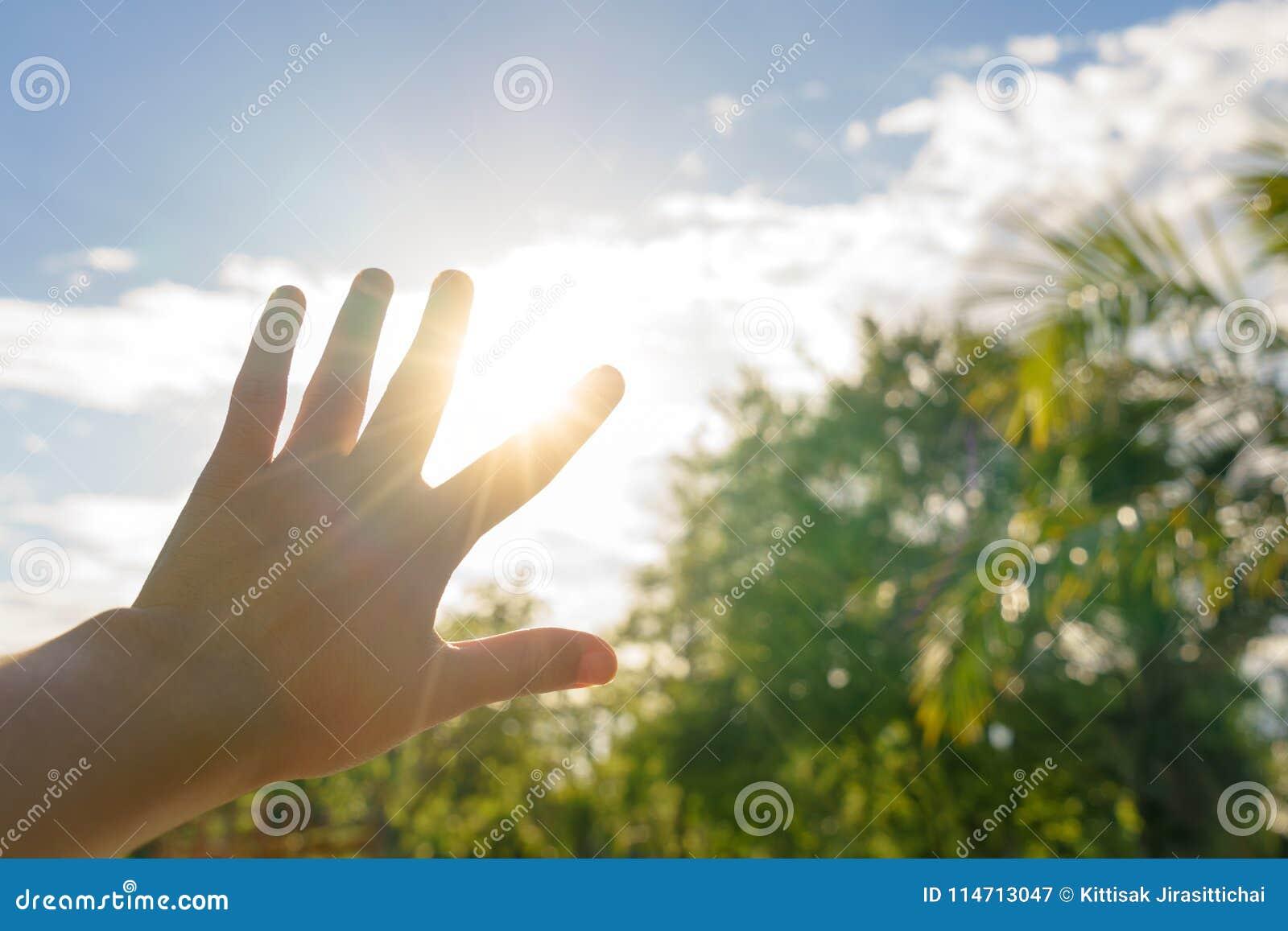 Esponga al sole i ciechi con la mano di estate calda - riscaldi il concetto