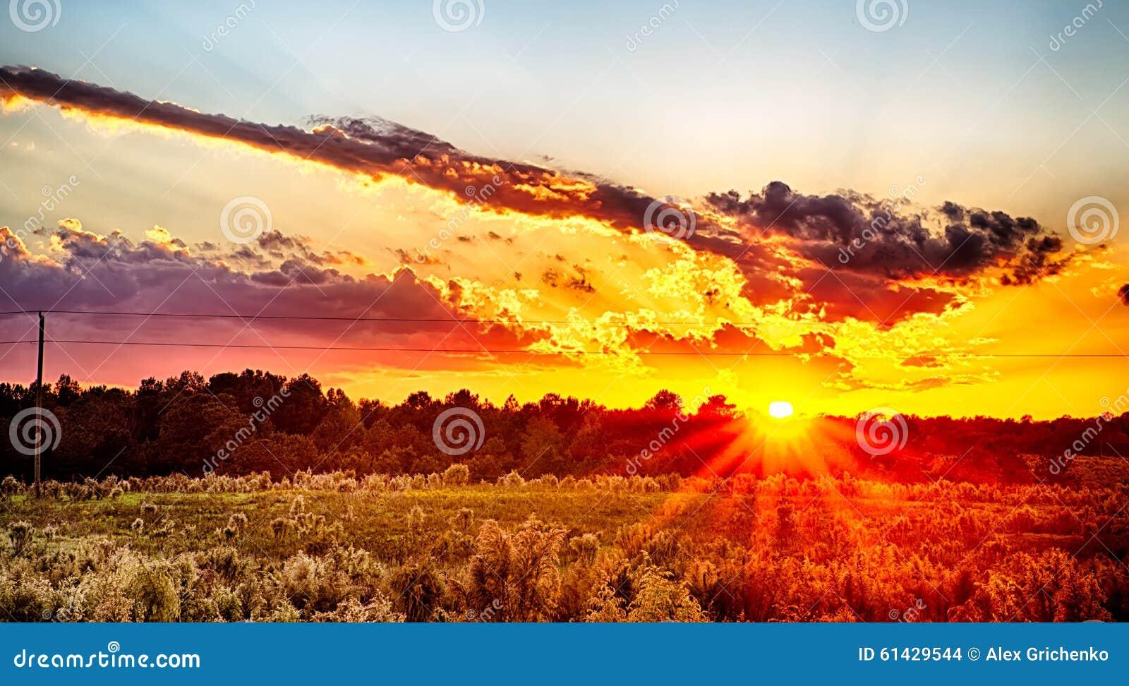 Esponga al sole la regolazione sopra la terra dell azienda agricola del paese a York Carolina del Sud