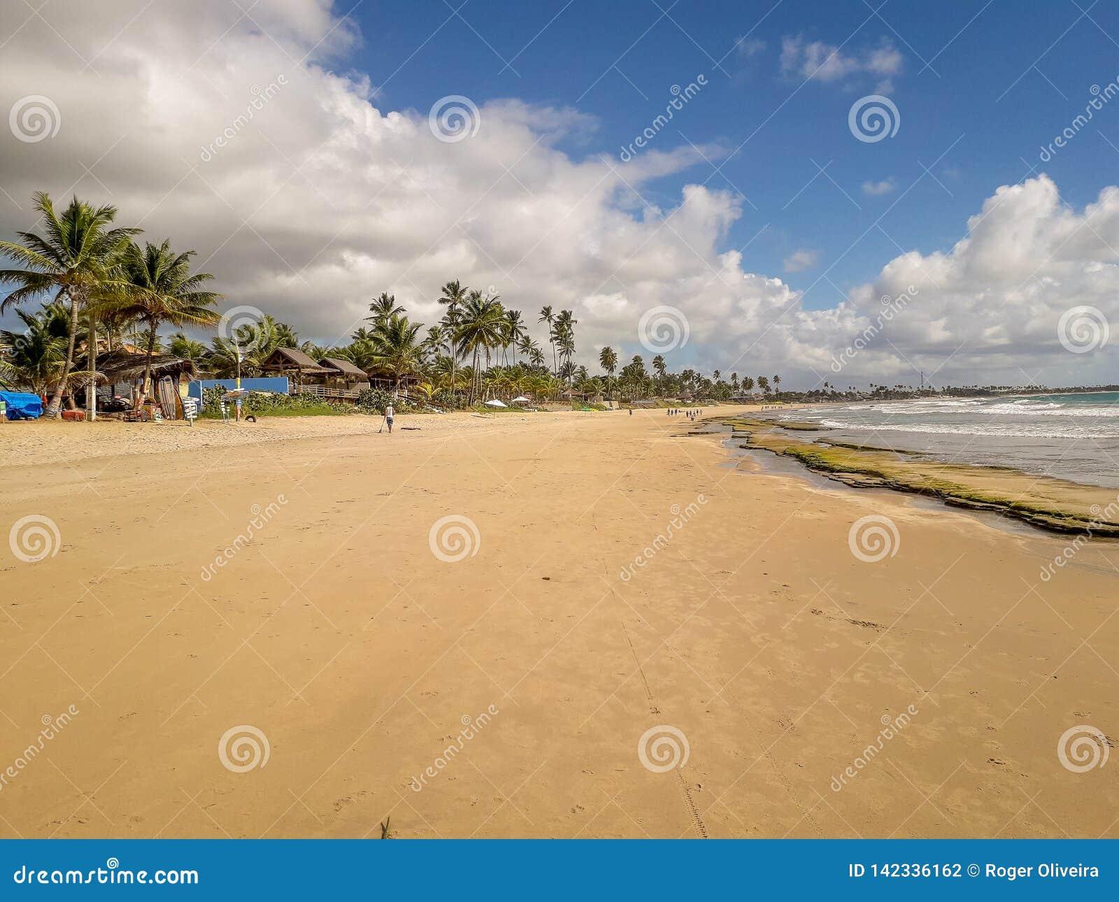 Esponga al sole sopra la spiaggia tropicale con il cocco a Oporto de Galinhas, Brasile Siluette delle palme e del cielo nuvoloso