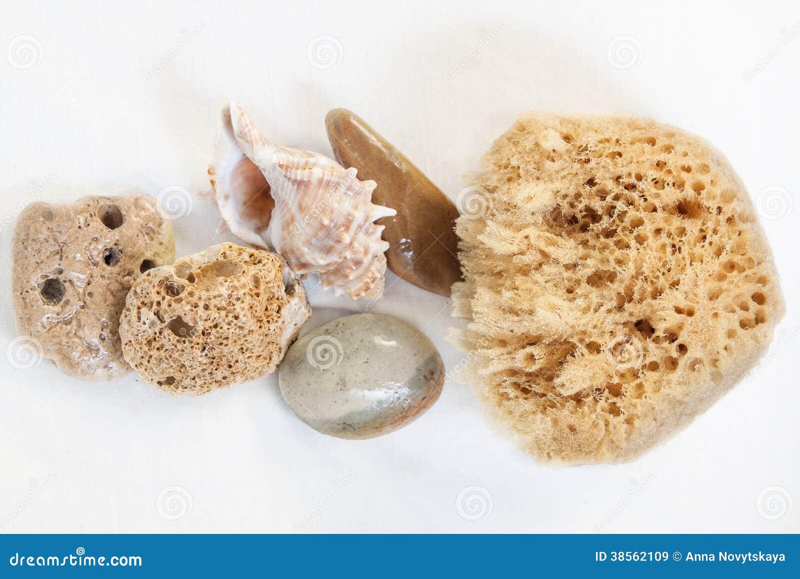 Esponja para ba arse piedra p mez piedras del mar del for Objetos para banarse
