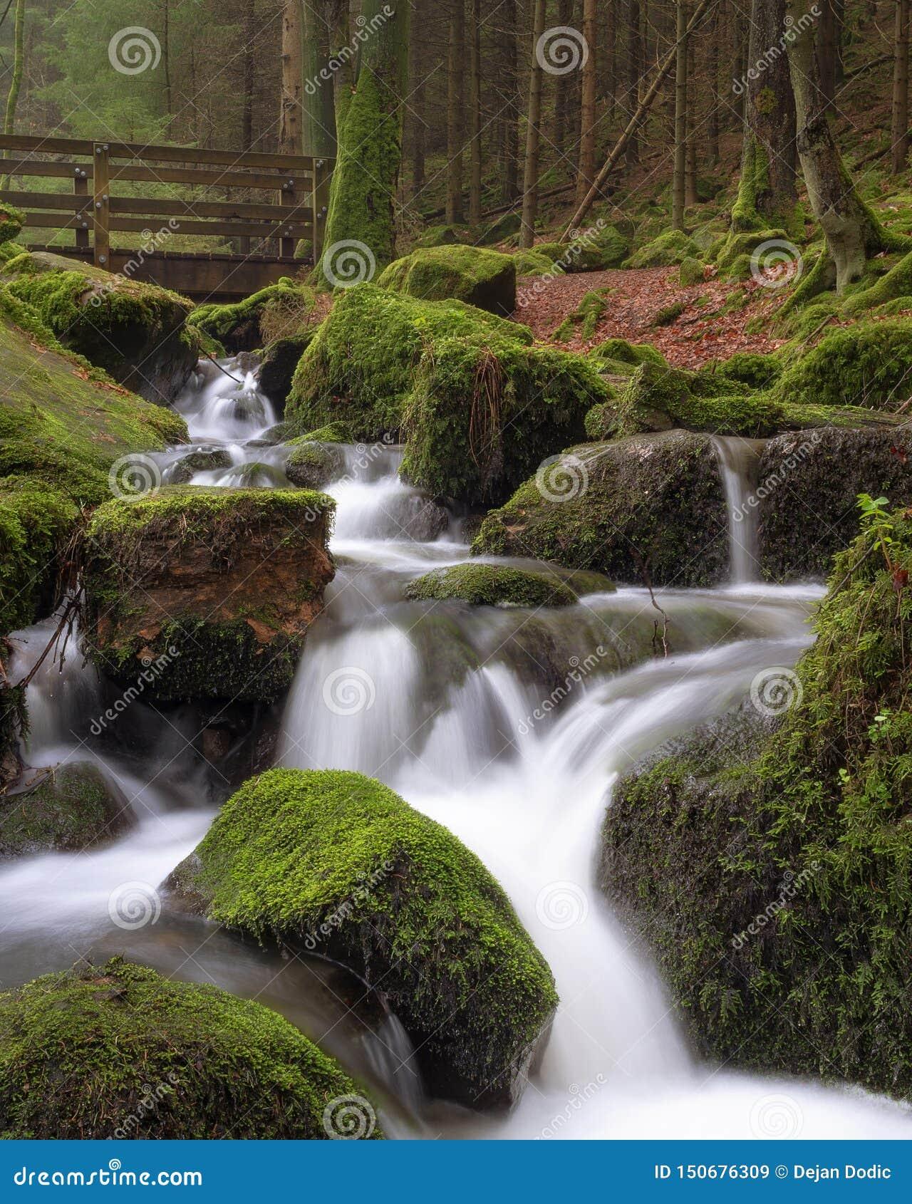 Esposizione lunga della corrente della foresta di Teutoburg