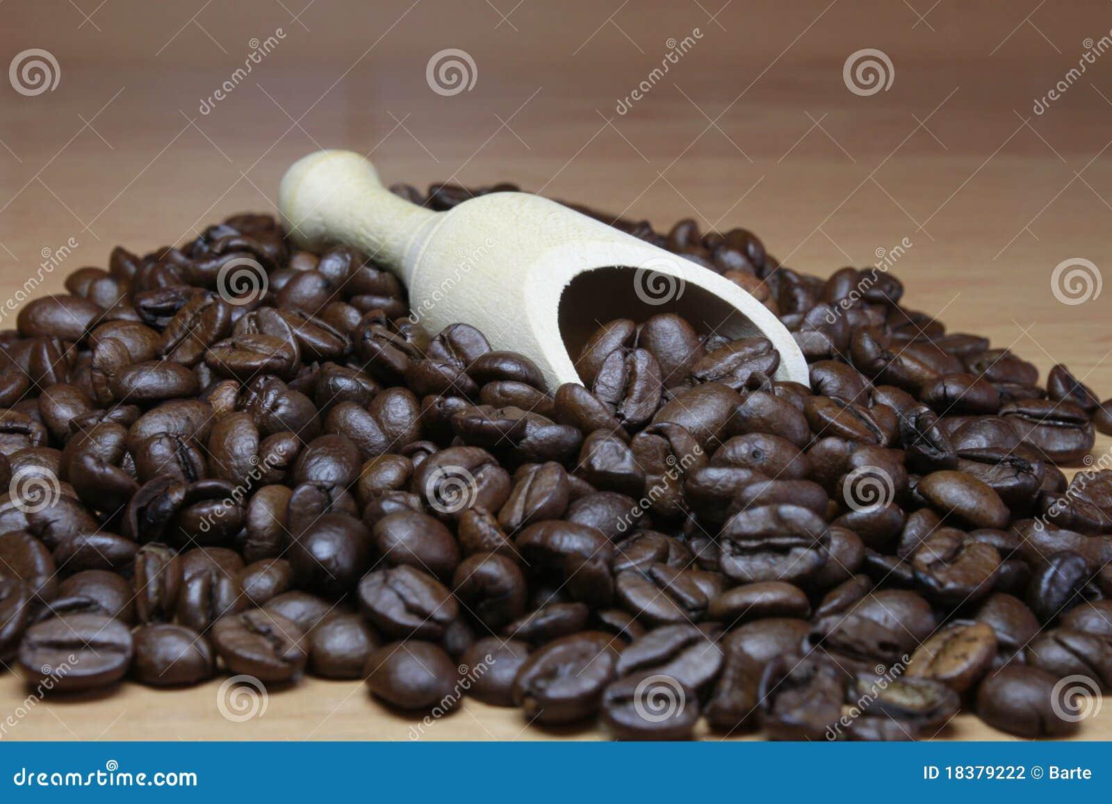 Espresso фасолей