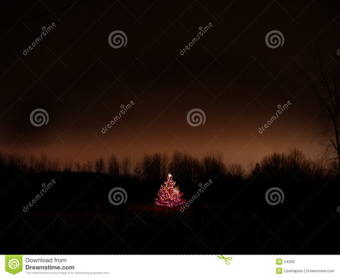 Download Esprit de Noël photo stock. Image du lumières, fond, arbre - 54200