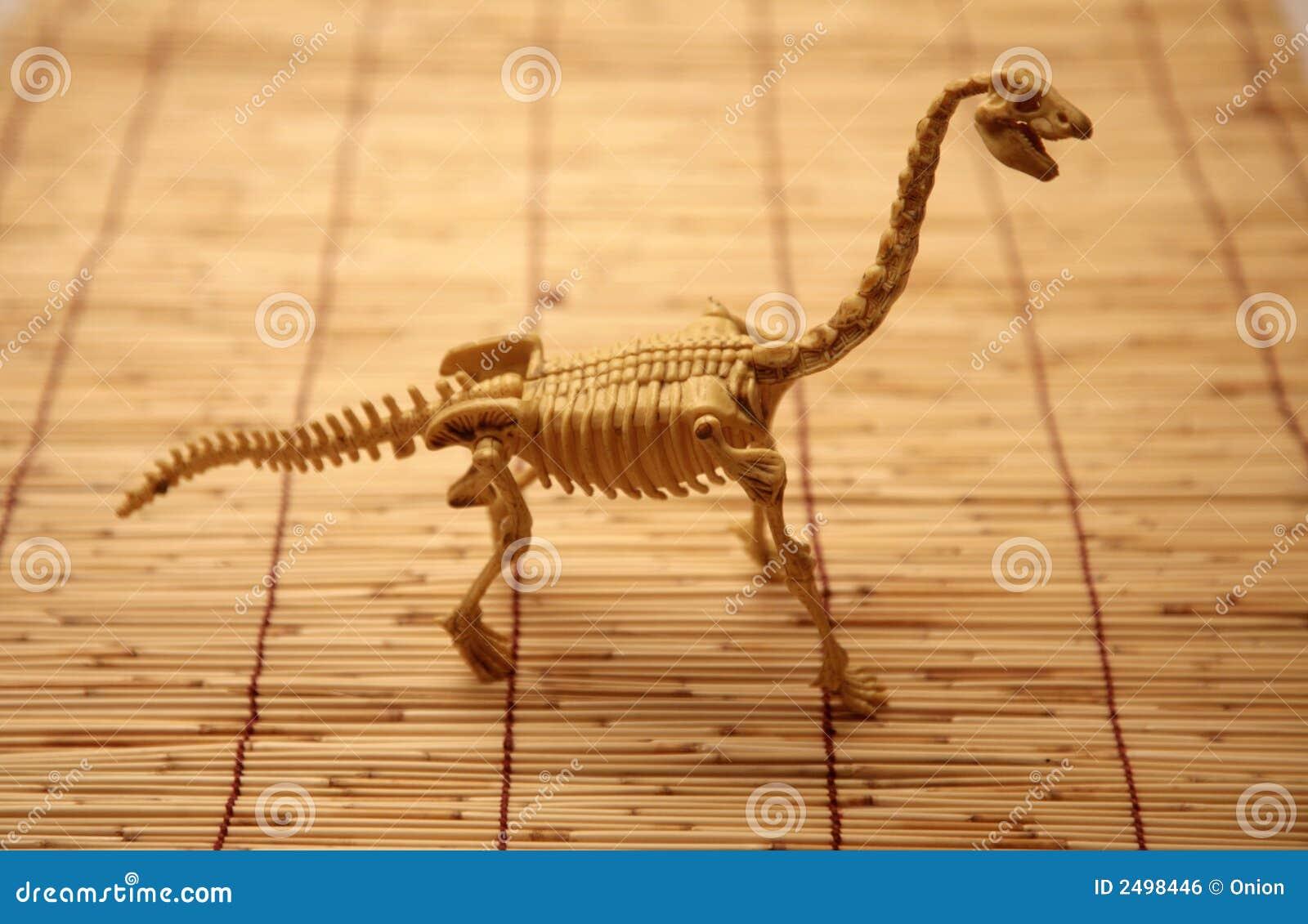 Esqueleto del dinosaurio foto de archivo. Imagen de dinosaurio - 2498446
