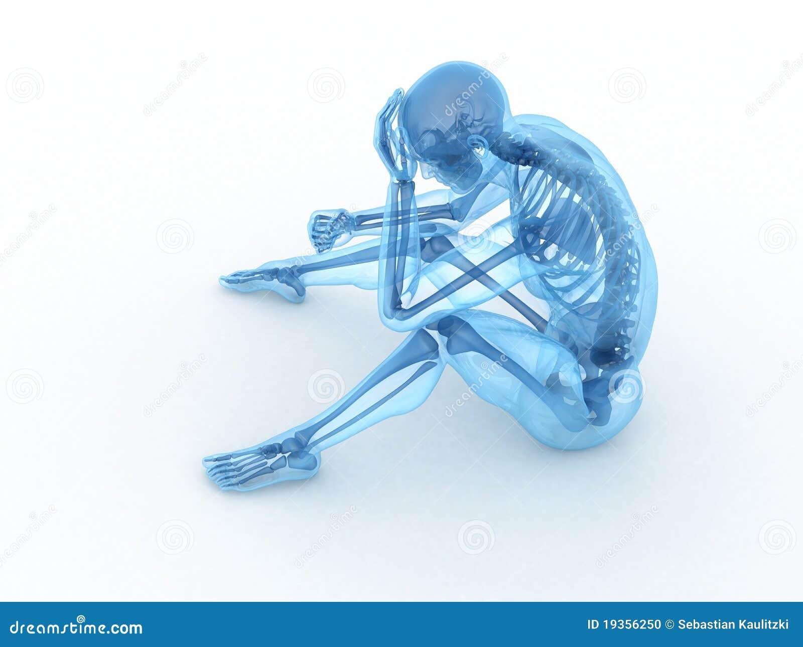 Esqueleto masculino de assento