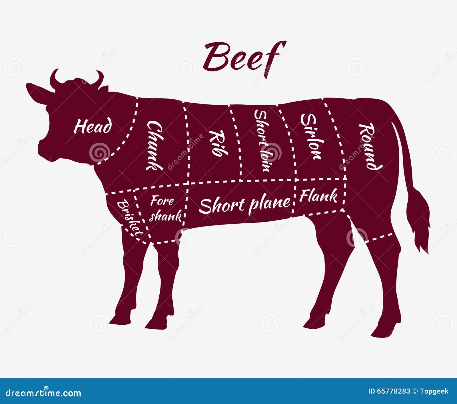 Esquema de cortes da carne para o bife e o assado