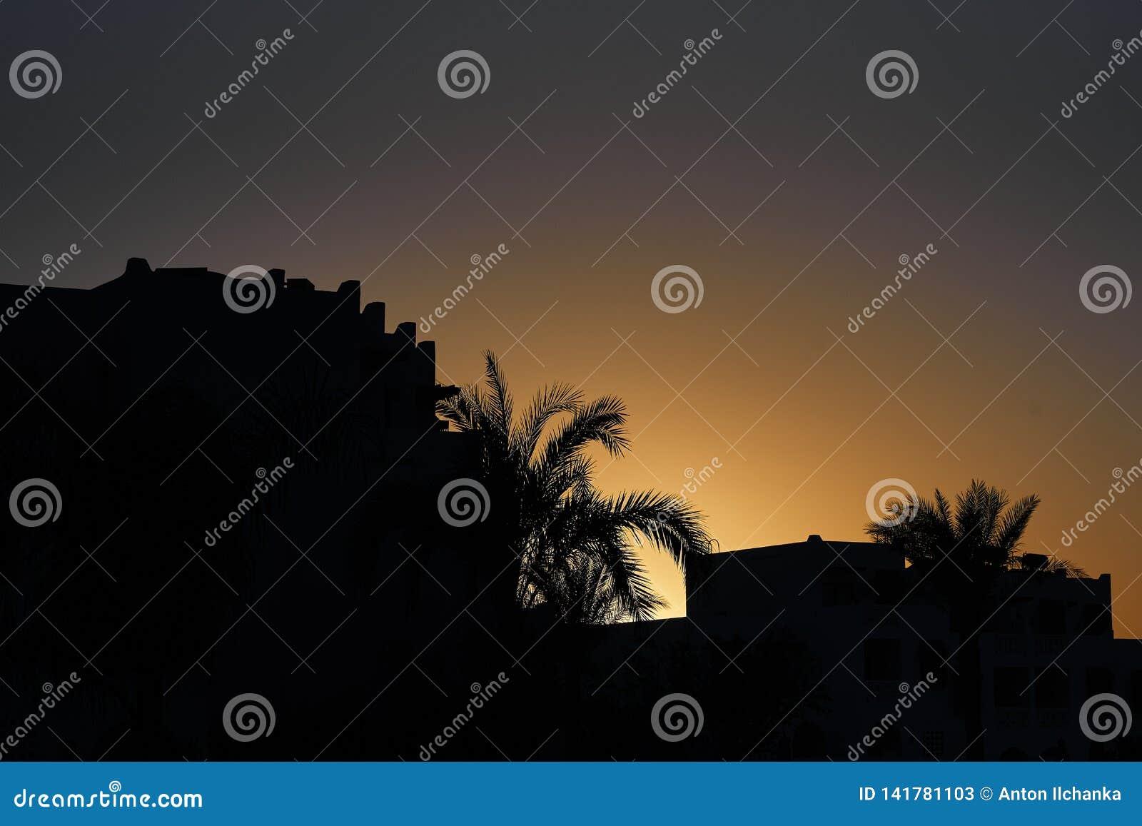 Esquemas de las palmeras y casas del centro turístico en la salida del sol tropical