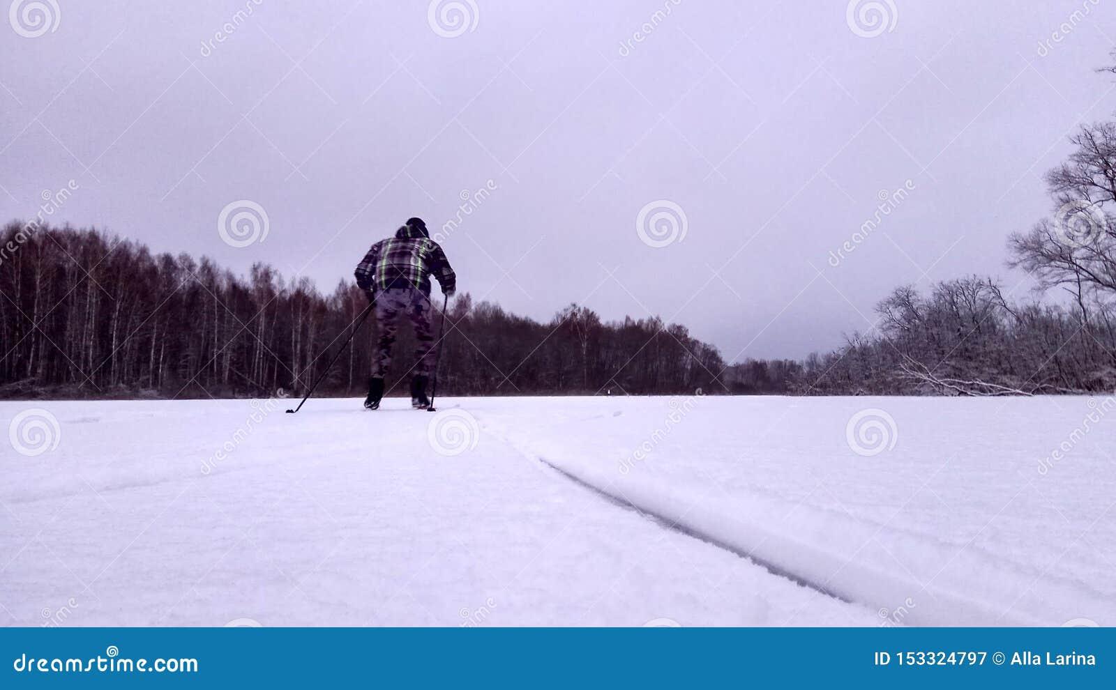 Esquiador en un camino del invierno en un fondo nevoso del papel pintado del bosque del pino