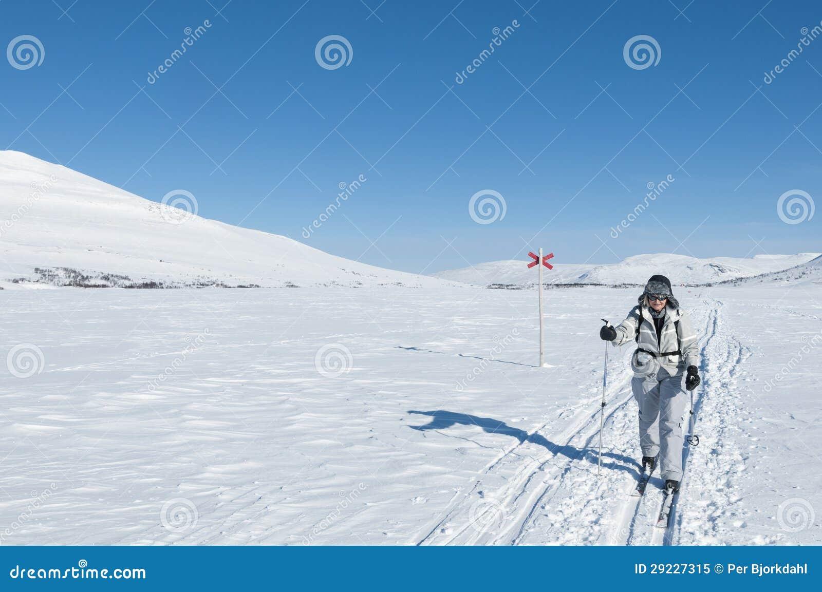 Download Esquiador Fêmea Da Excursão Na Trilha Backcountry Do Esqui Imagem de Stock - Imagem de excursão, passatempo: 29227315