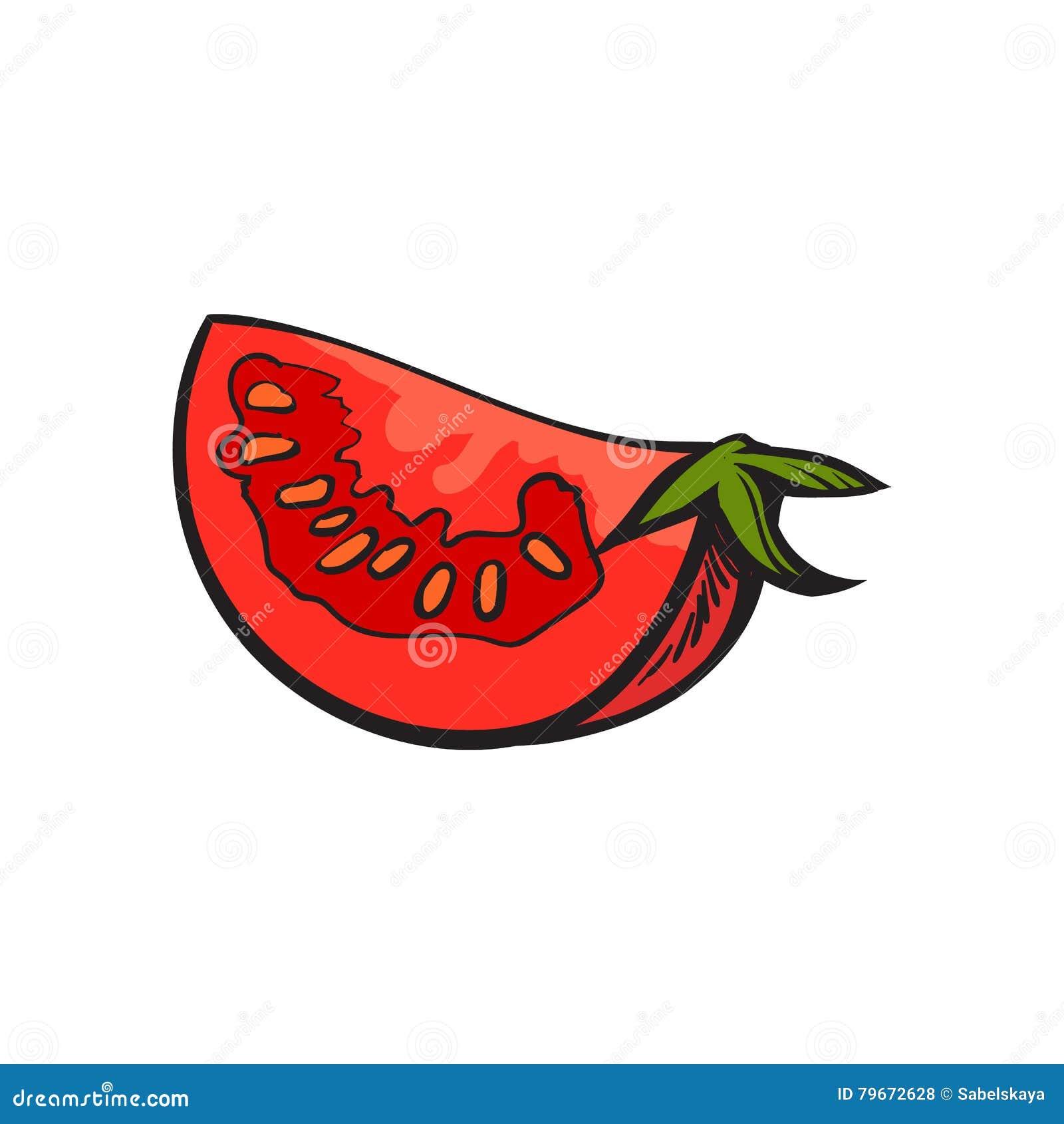 Esquissez le dessin de style de la tranche rouge m re de tomate illustration de vecteur - Dessin de tomate ...