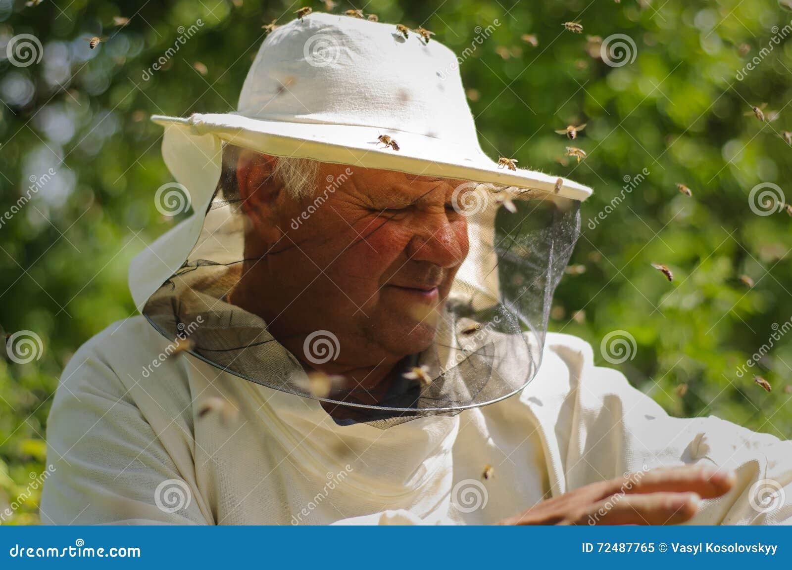 Essaim d apiculteur et d abeille