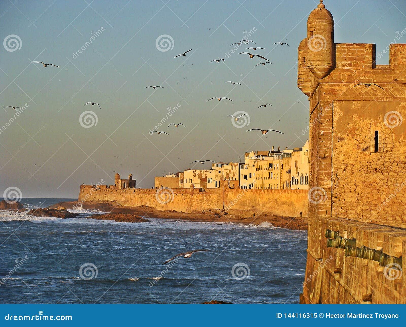 Essaouira old port in Morocco