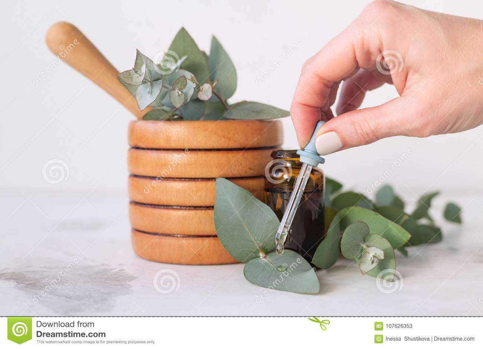 Essence d eucalyptus