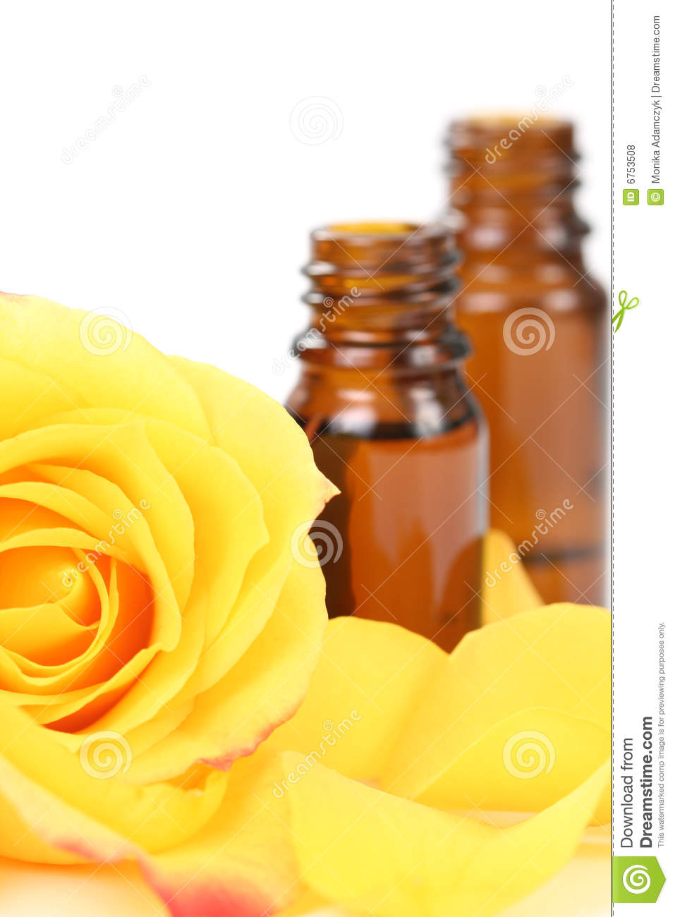 Essential oil royalty free stock photos image 6753508 - Rose essential oil business ...