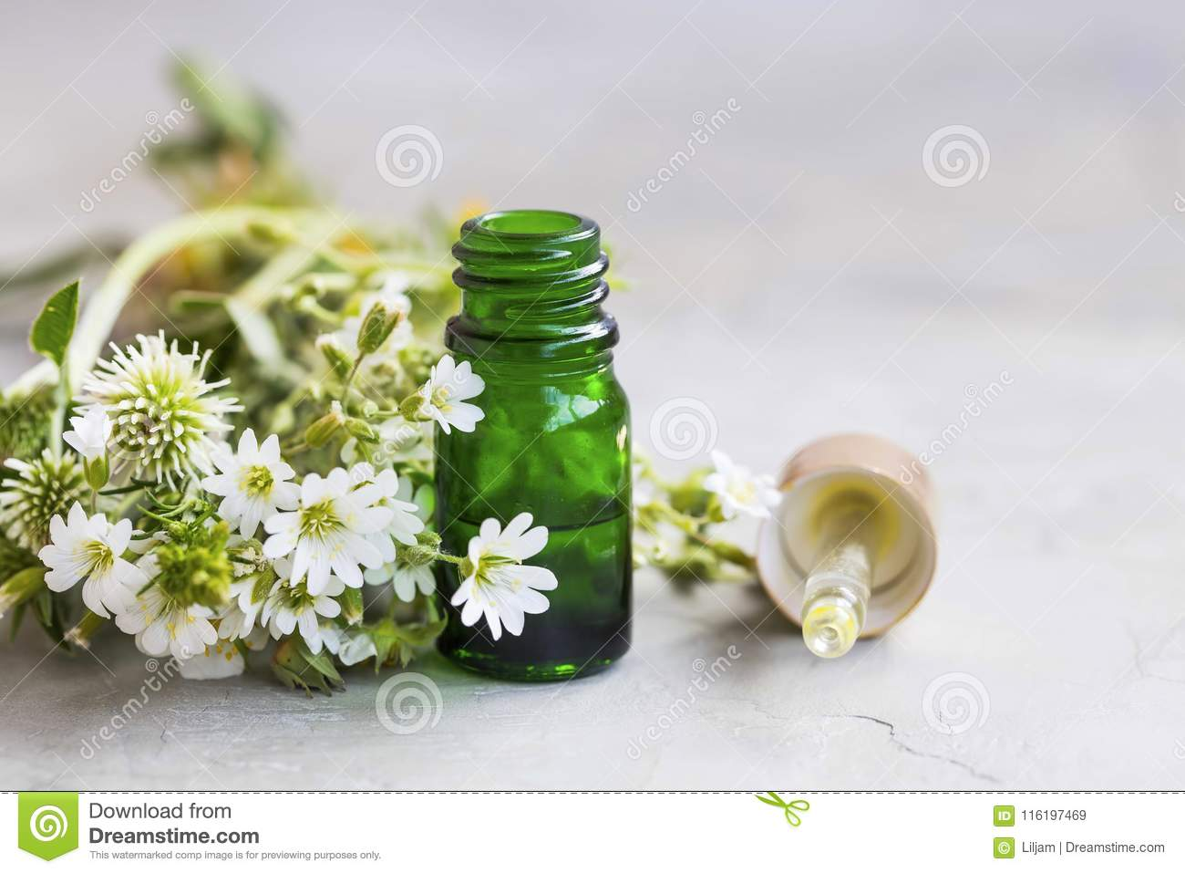 Herbal and aromatherapy essential oil with white flowers and med herbal and aromatherapy essential oil with white flowers and med mightylinksfo
