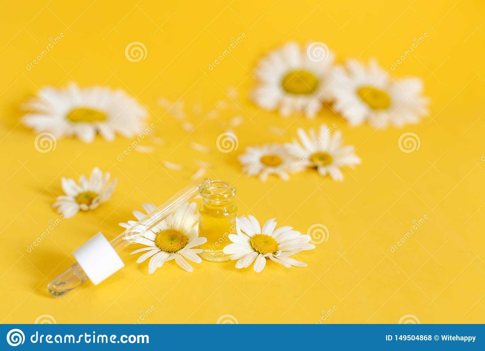 Essential oil in glass bottle with fresh chamomile flowers, beauty treatment. Spa concept. Selective focus. Fragrant oil of