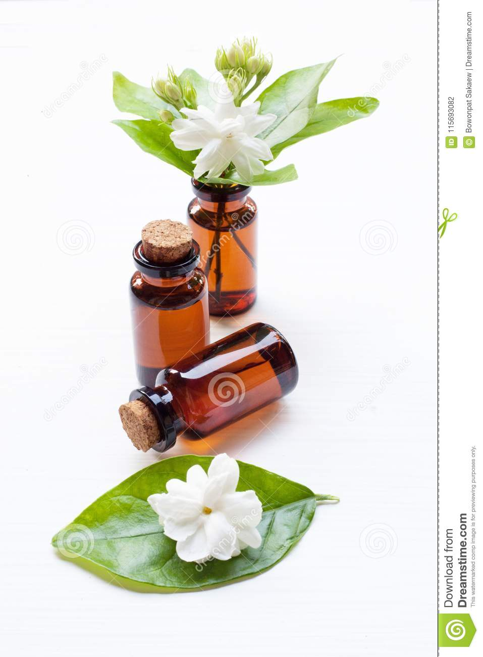 Essential Oil With Jasmine Flower Stock Photo Image Of Buddhism