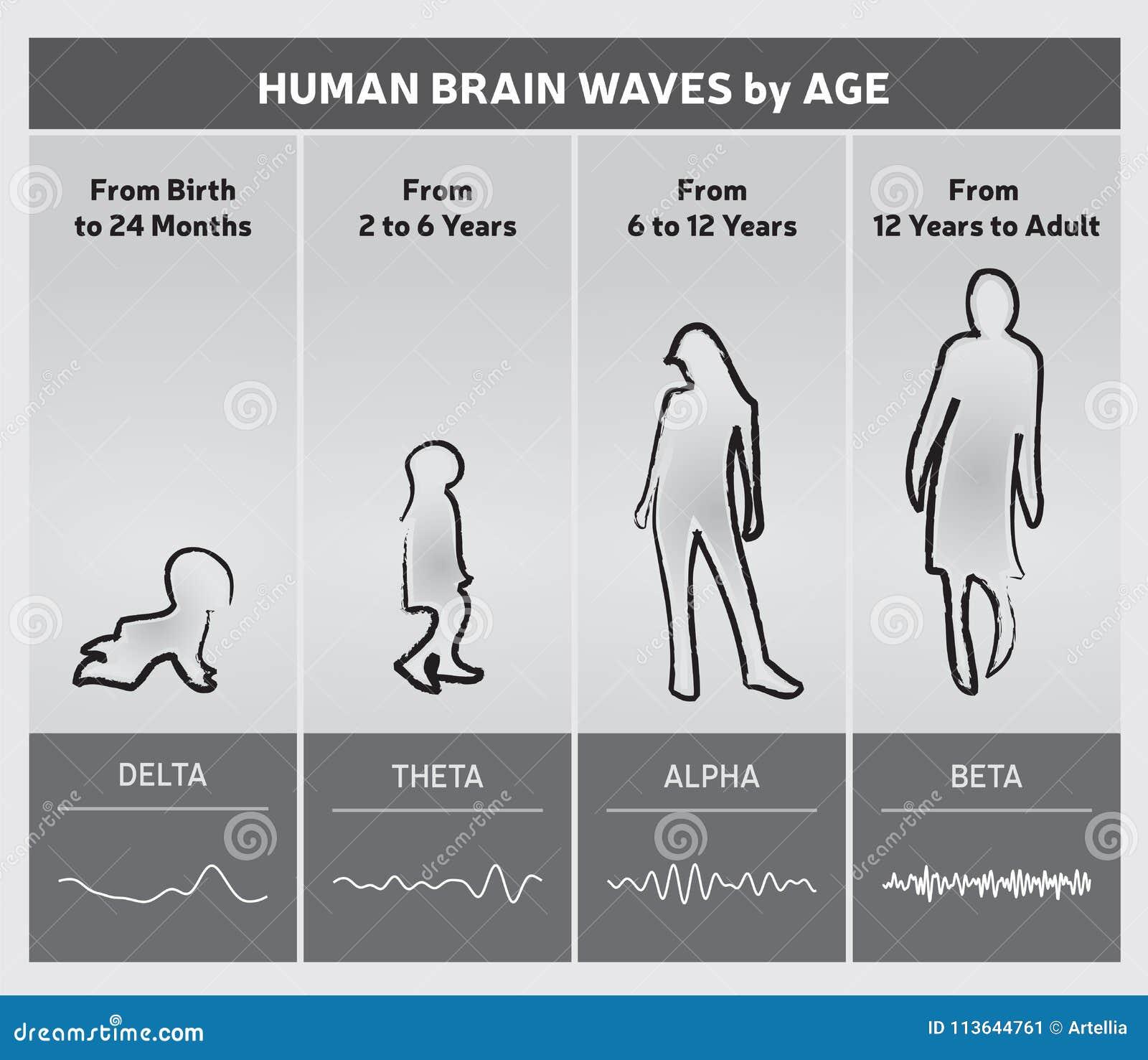 Essere umano Brain Waves dal diagramma di grafico di età - siluette della gente