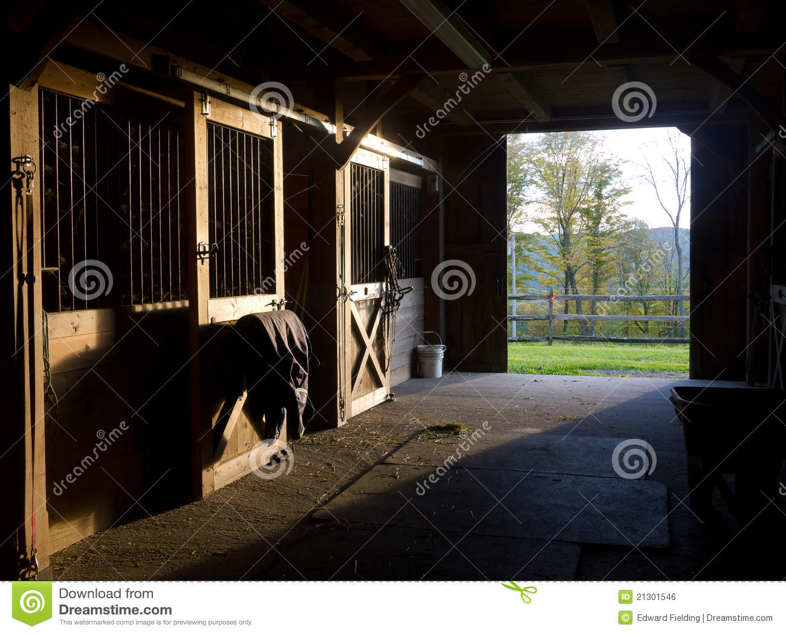 Estábulo do cavalo