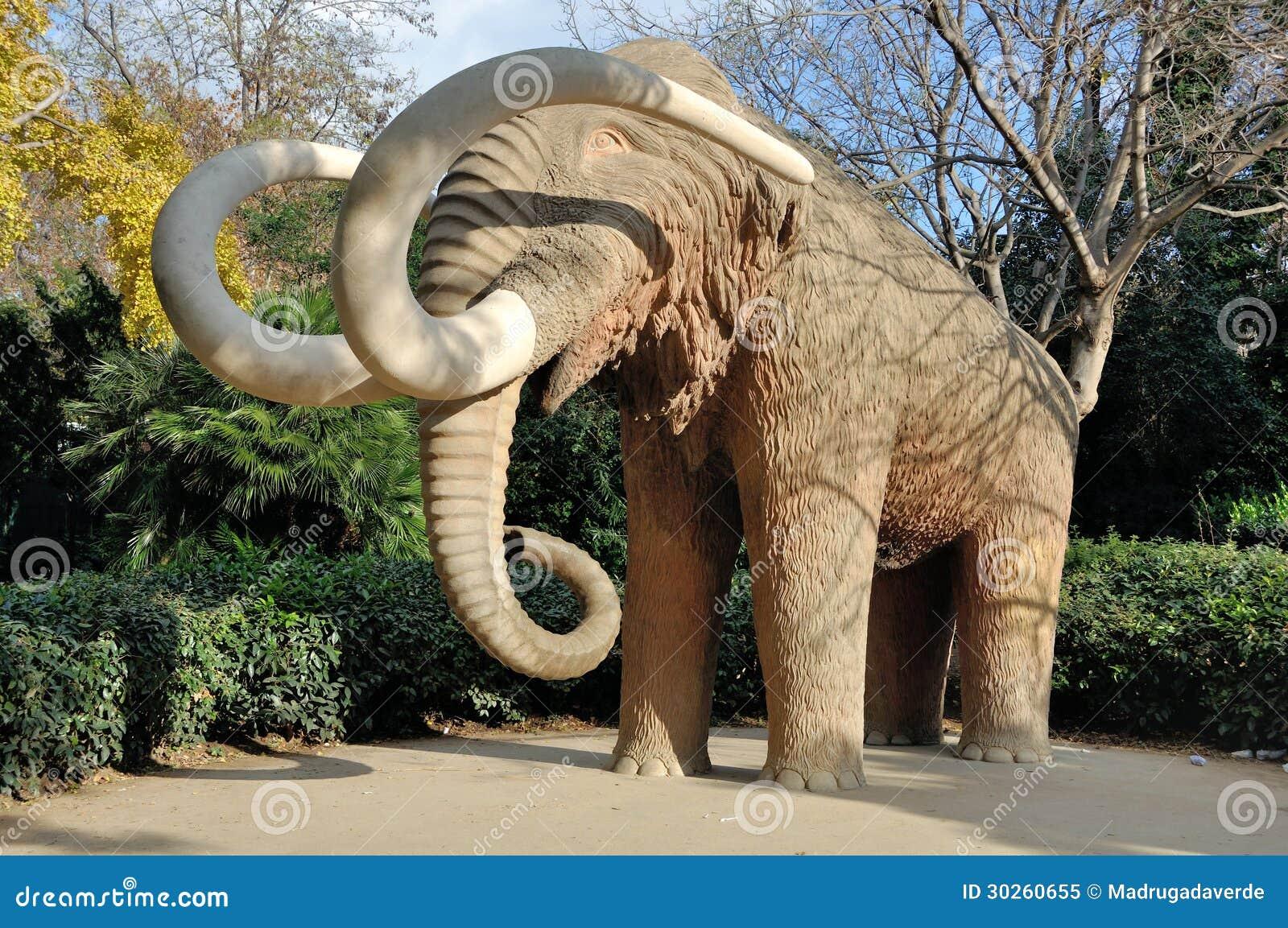 Mammoth no parque