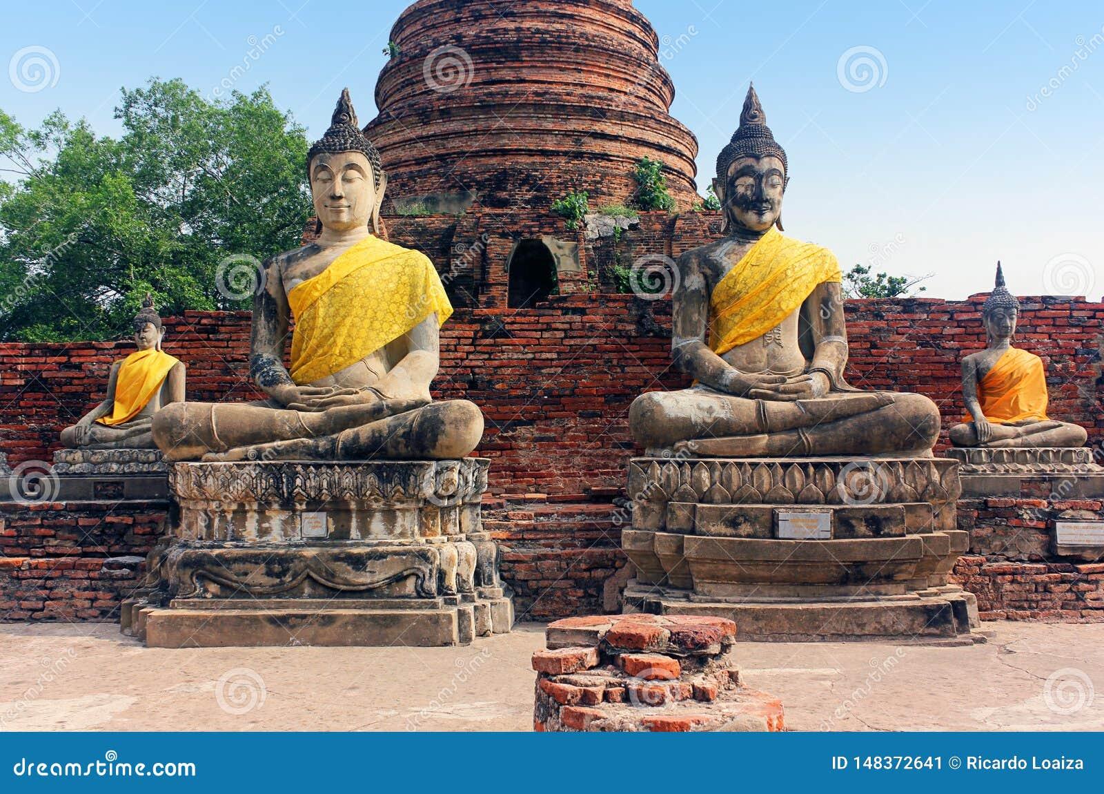 Estátuas antigas de buddha e ruínas do templo de Wat Yai Chaimongkol em Ayutthaya, Tailândia