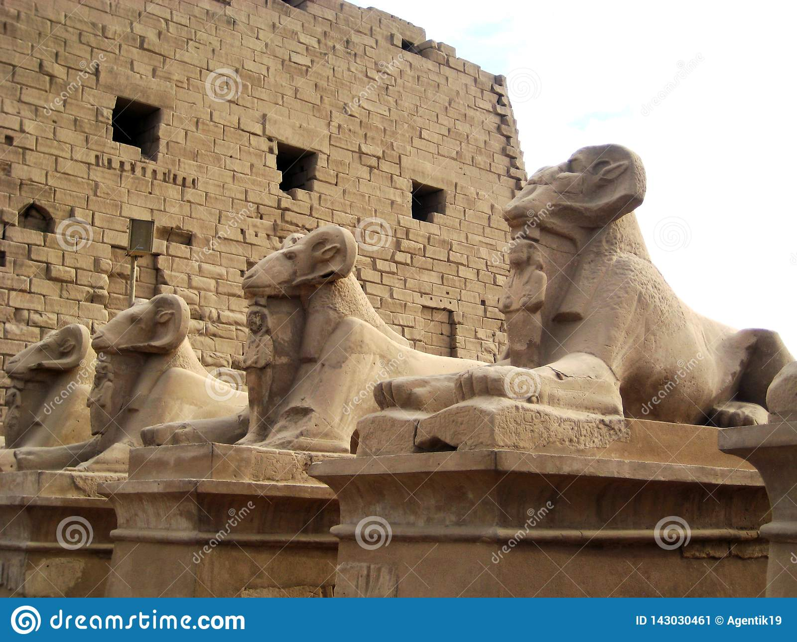 Estátuas da esfinge com a cabeça de uma ram