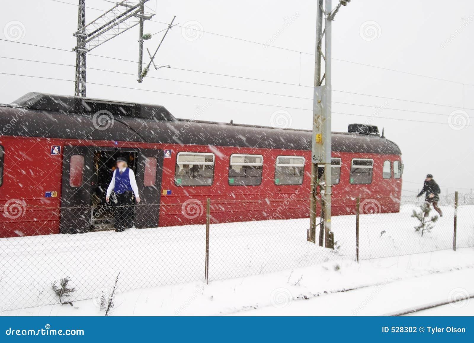Estação de caminhos-de-ferro do inverno