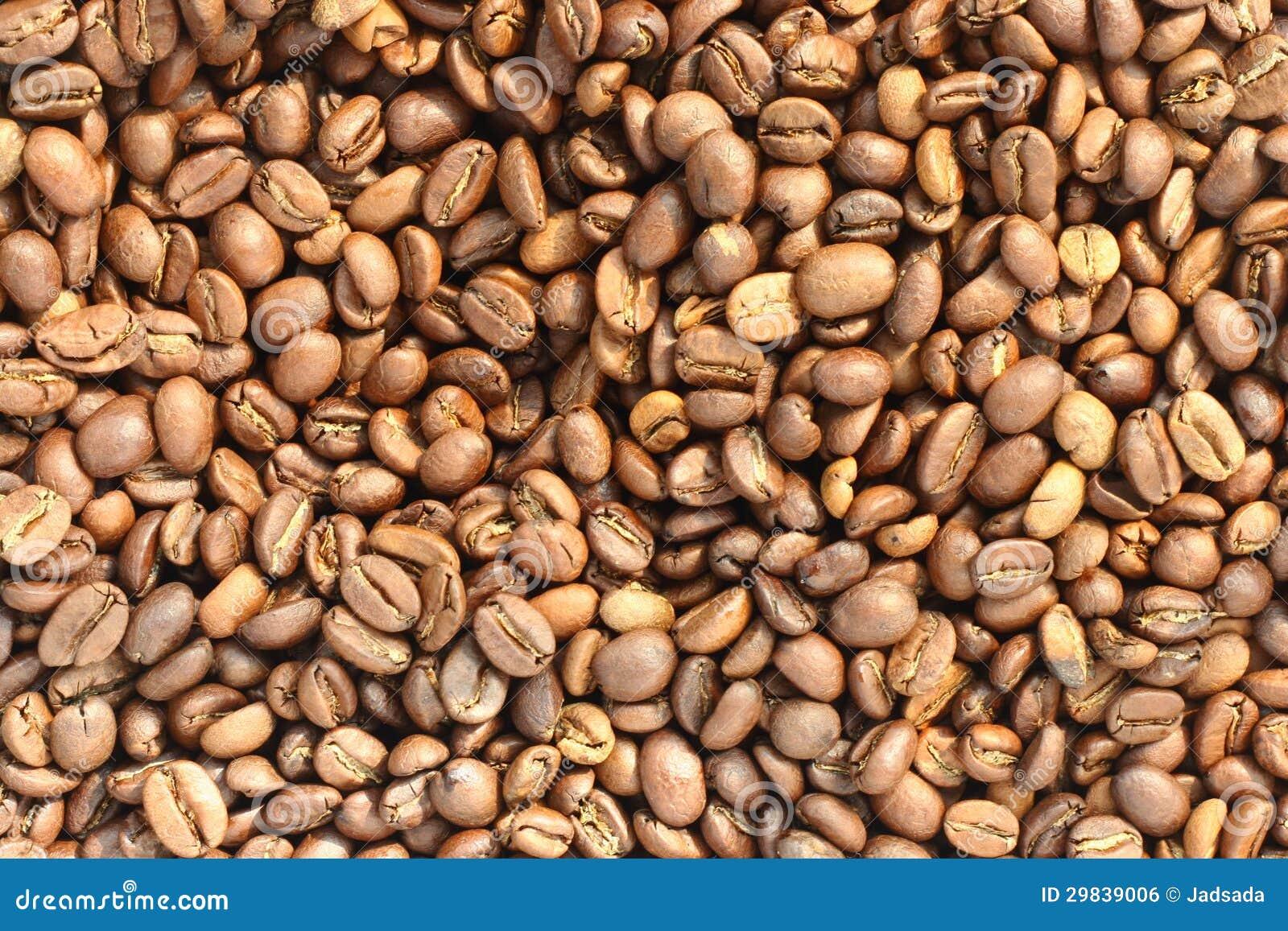 Feijão de café