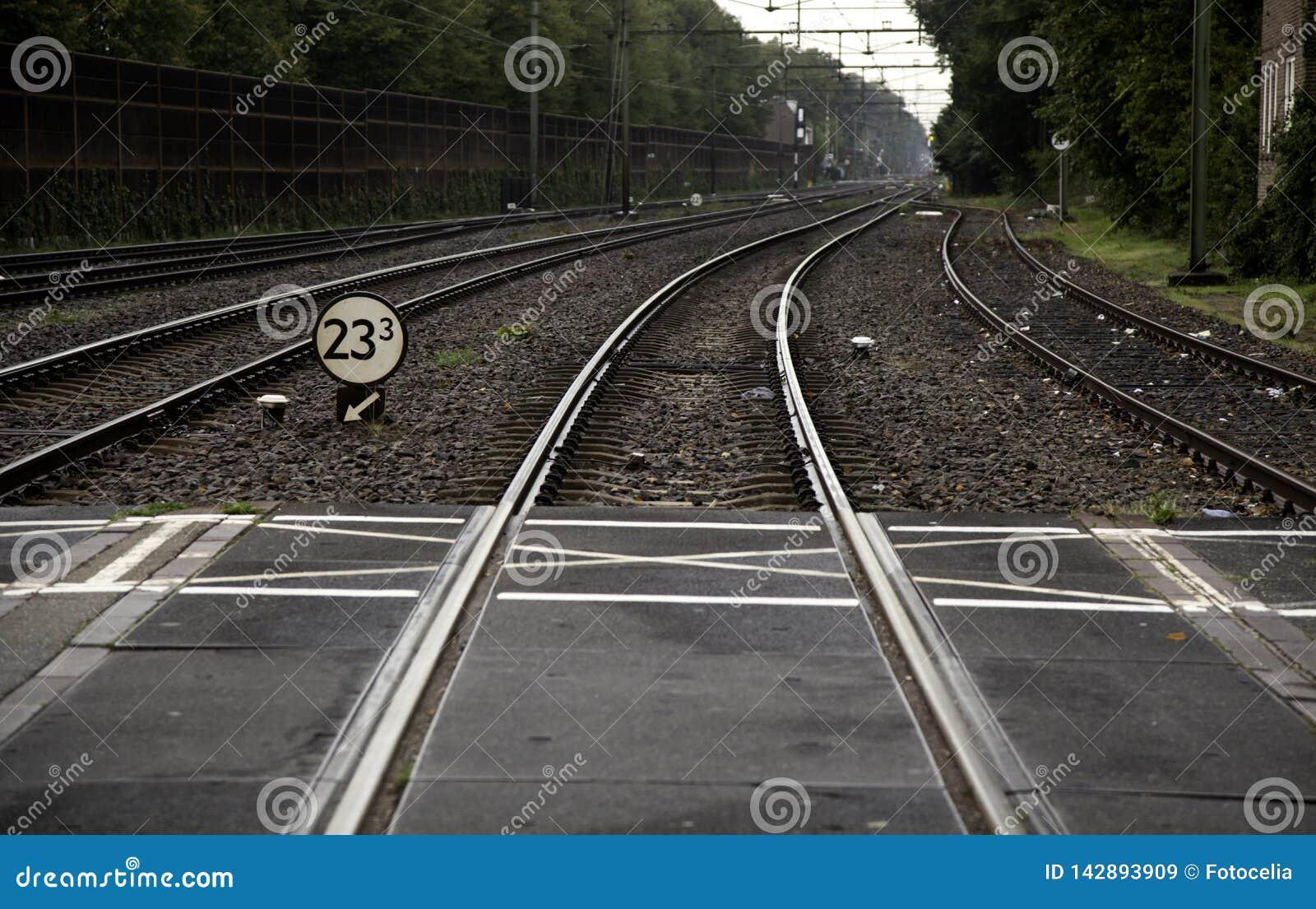 Estación de carriles del tren