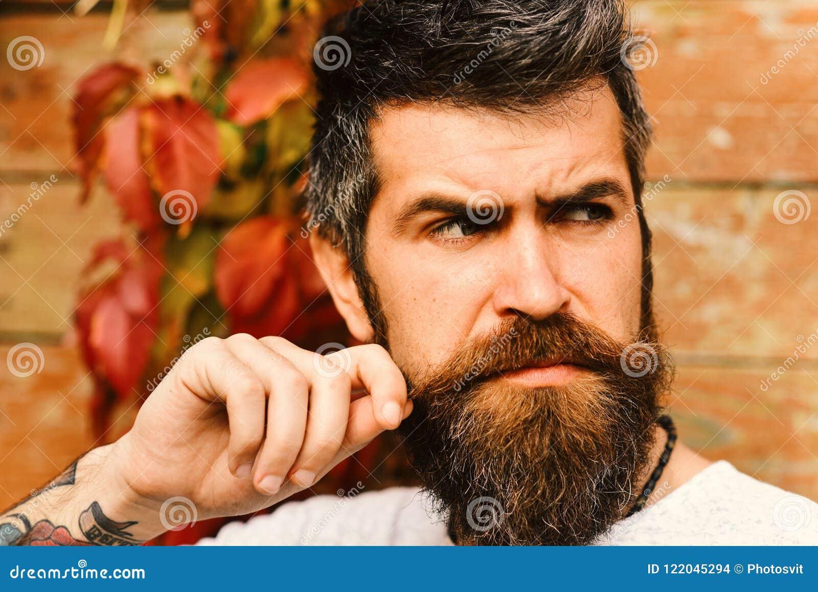 Estación del otoño y concepto de la belleza Individuo que presenta cerca de las hojas del rojo en la pared Machista con la barba