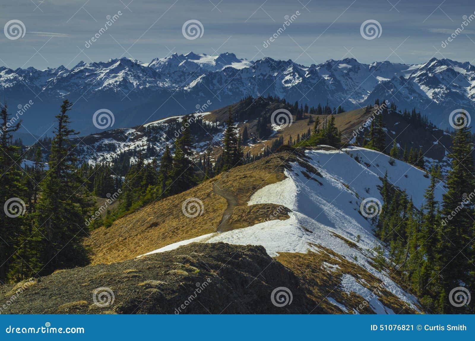 Estado de Washington de la opinión del monte Olimpo