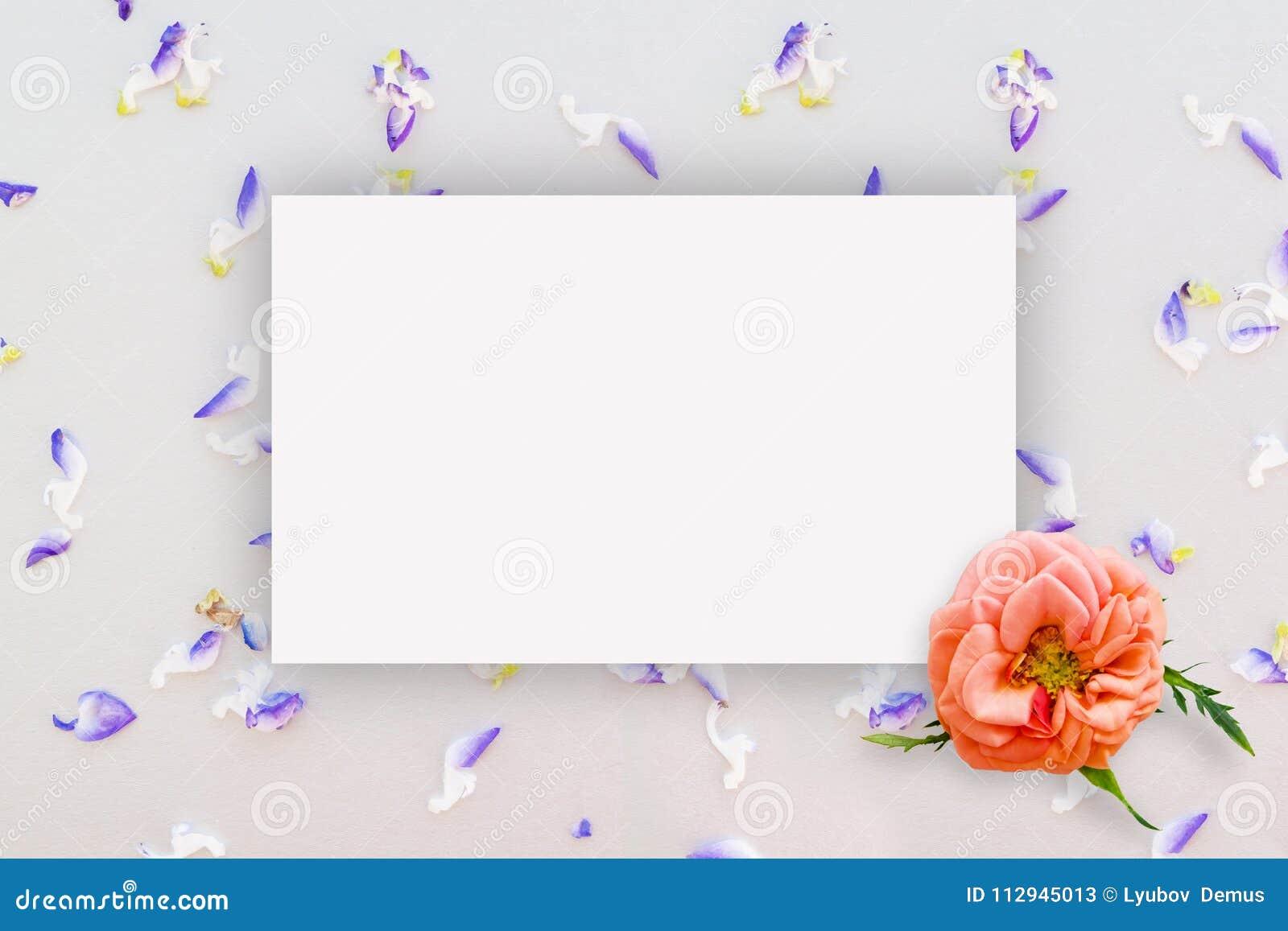 Estampado De Flores Abstracto Pequenas Flores En La Cartulina Con