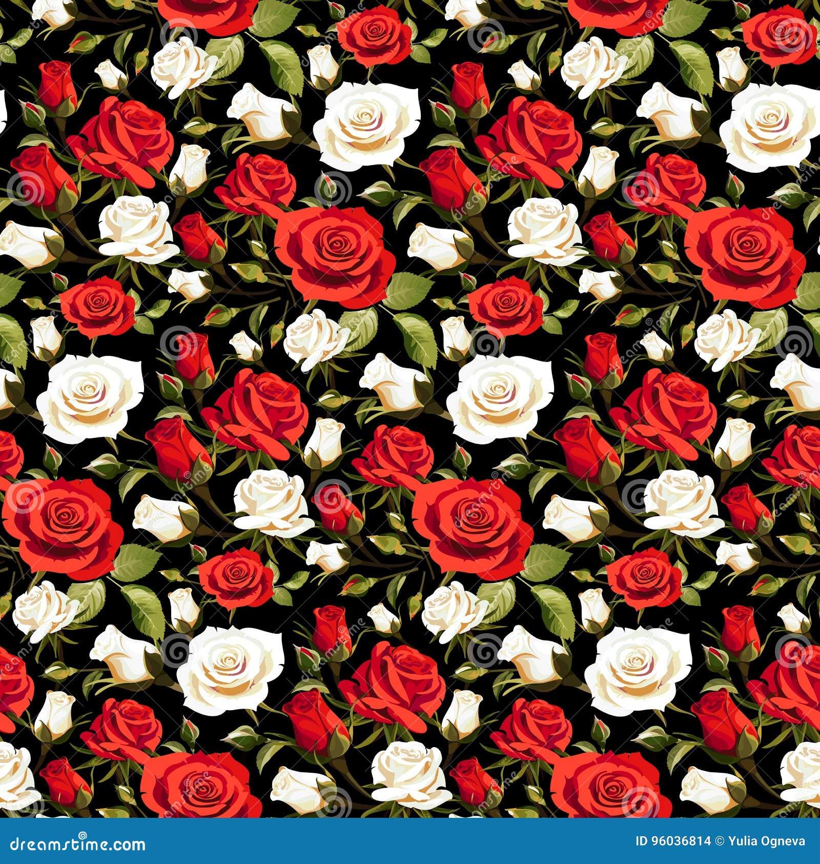 Flores Rosas Rojas Y Blancas