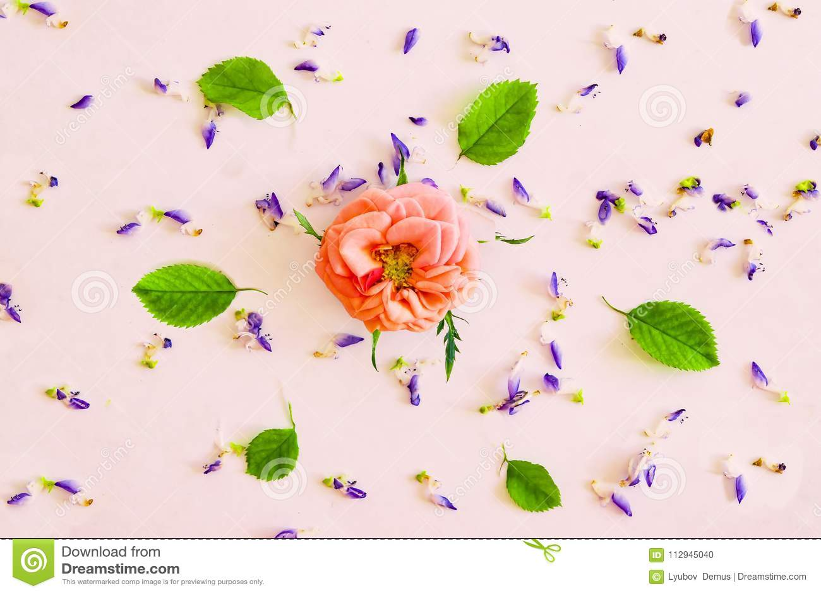 Estampado De Plores Abstracto Pequenas Flores En La Cartulina