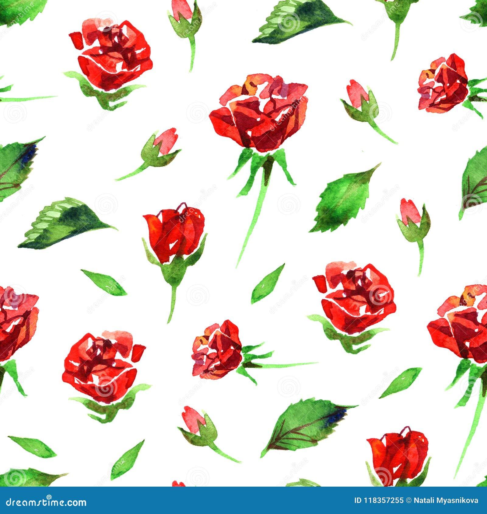 Estampado de plores color de rosa del Wildflower en un estilo de la acuarela aislado Nombre completo de la planta: rosa del rojo,