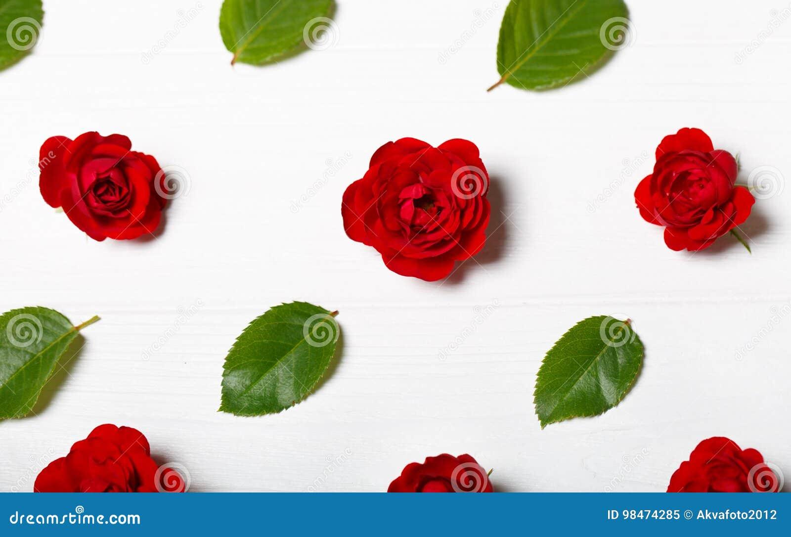 Estampado de plores hecho de rosas rojas y de hojas Vector de madera blanco