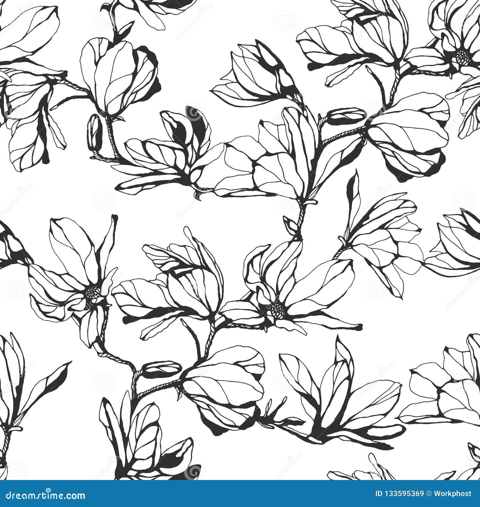 Estampado de plores inconsútil de la magnolia en un fondo blanco Mano dracma