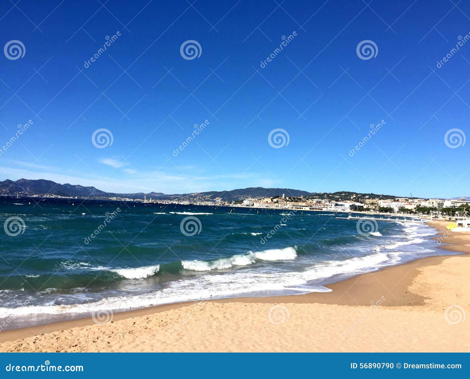 Estate nelle dune