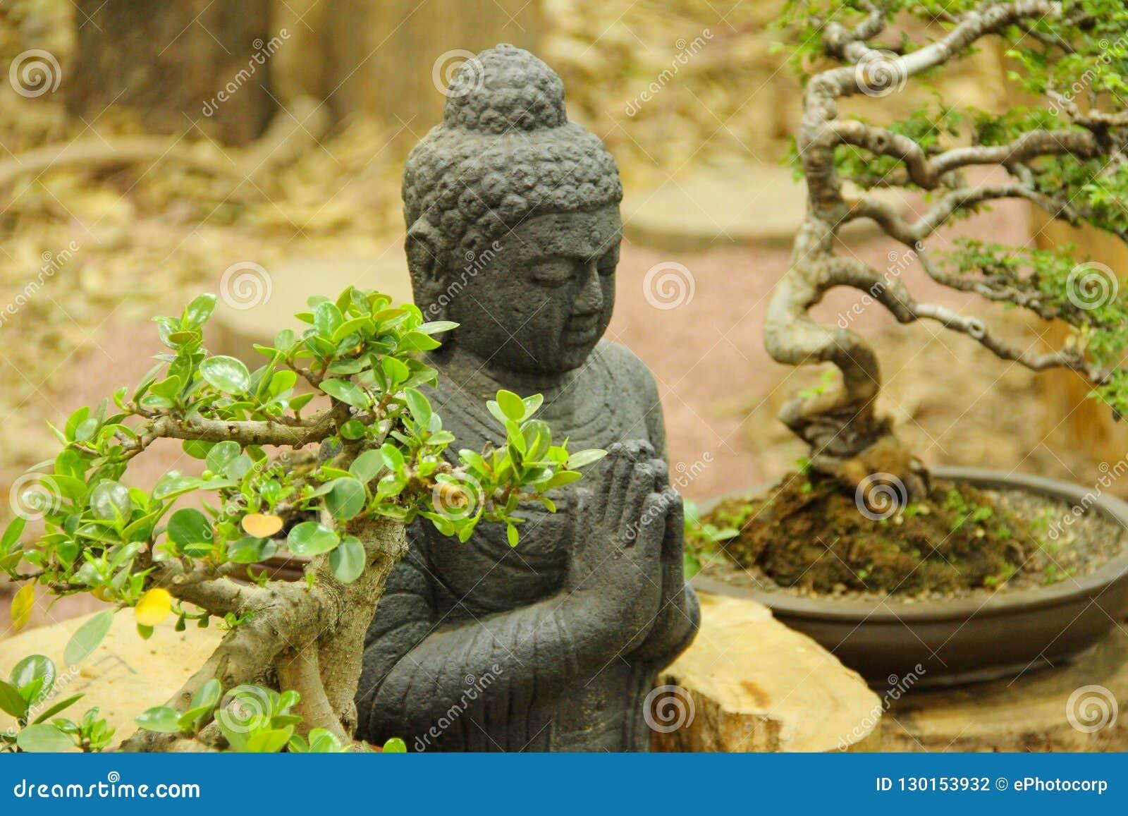 Estatua con los árboles de los bonsais, exposición de Buda del árbol de los bonsais en Pune