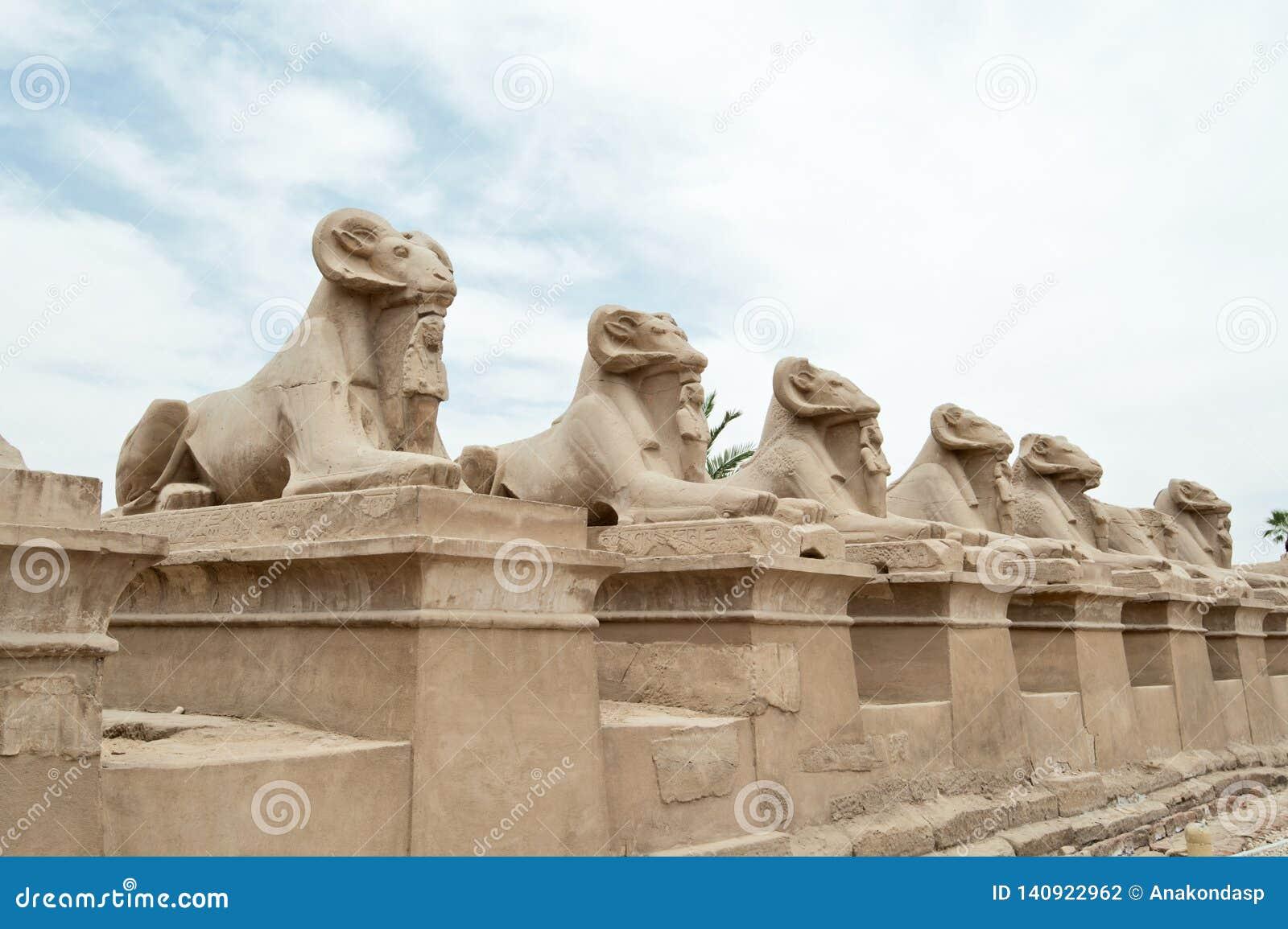 Estatuas de Egipto antiguo de la esfinge en templo del karnak de Luxor